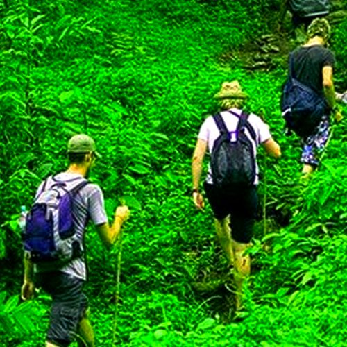 Trekking Knuckles Mountain Range, Kandy