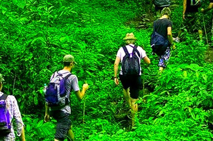 Trekking Knuckles Mountain Range, Kandy