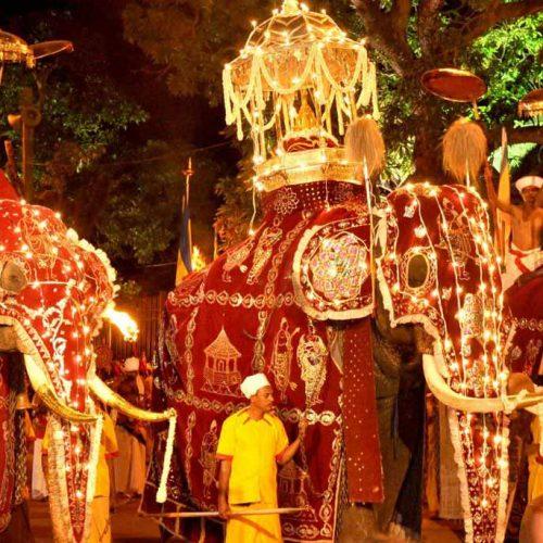 Kandy Perahera Tour 06 days – 05 Nights